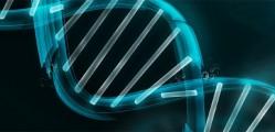 Bioinformatica ADN