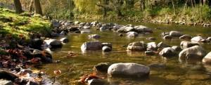 App ríos Gipuzkoa