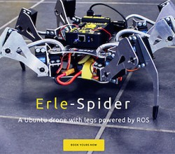 Erle Spider