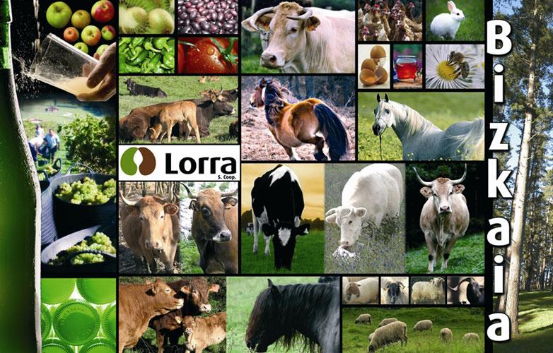 LORRA S.Coop cooperativa