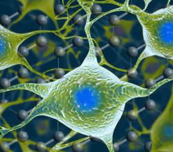 CIC biomaGUNE Graphene Flagship